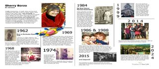 Timeline Splash UPDATED 2014 SHERRY BORZO