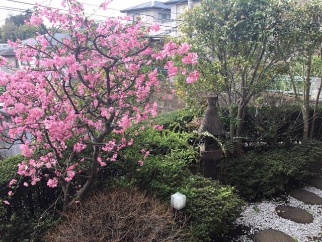 Shufu_Garden3 (2)